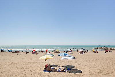 Four beach umbrellas campsite  - p1558m2132773 by Luca Casonato