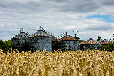 Storage Containers  - p1082m1464588 by Daniel Allan