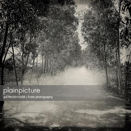p378m2010028 von Flore photography