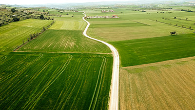 Green rural land with dirt road seen from drone - p300m2264414 by Aitor Carrera Porté