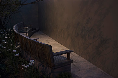 High angle view of empty bench amidst flowers and facing wall at night - p301m1579747 by Michael Mann