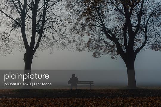 Alleine im Nebel - p305m1091379 von Dirk Morla