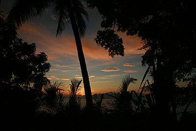 Nicoya Peninsula - p1065m886256 by KNSY Bande