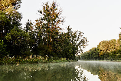 River bend with forest and mist - p1312m2258024 by Axel Killian