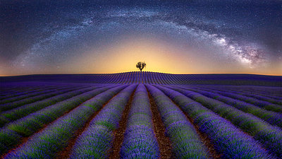 France, Alpes-de-Haute-Provence, Valensole, lavender field under milky way - p300m2023754 by Raul Podadera Sanz