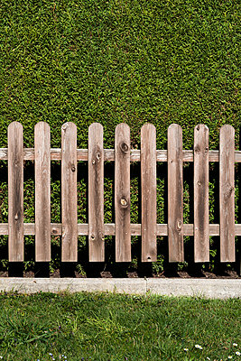 Garden fence and hedge - p874m2182185 by Lisa Franz