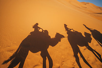 Shadows of people riding camels in sandy desert, Sahara, Morocco - p1023m2067664 by Anna Wiewiora