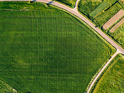 Aerial view of road amidst agricultural field during sunny day - p1166m2025359 by Cavan Images