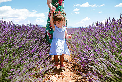 France, Provence, Valensole plateau, Mother and daughter walking among lavender fields in the summer - p300m2012548 by Gemma Ferrando