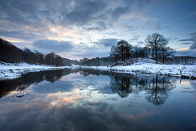 Winter view of River Brathay at dawn, under snow with reflections, near Elterwater Village - p8710501 by Lee Frost