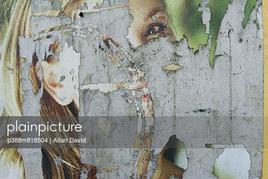p388m818504 von Allan David
