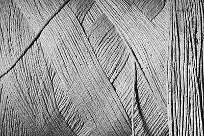 Threads, close-up (B&W) - p4340127f by Donna Eaton
