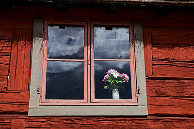 Beautiful flowers in a window - p956m1044914 by Anna Quinn