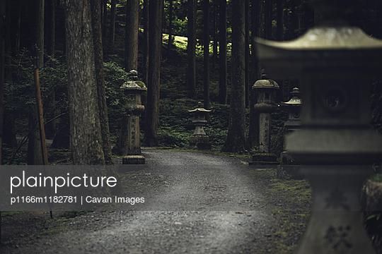 p1166m1182781 von Cavan Images