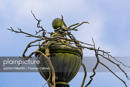 Vergänglichkeit - p223m1586639 von Thomas Callsen