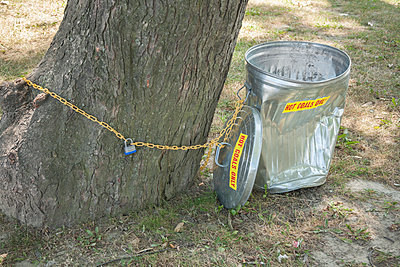 Trash can chained to tree - p397m1083267 by Peter Glass