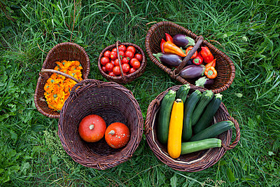 Gemüse - p502m963454 von Tomas Adel
