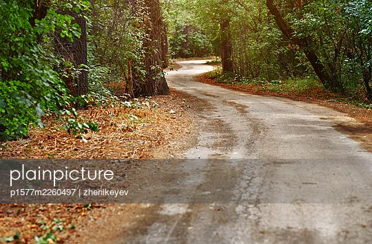 Path in the autumn forest - p1577m2260497 by zhenikeyev