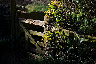 Gate - p1057m1005061 by Stephen Shepherd
