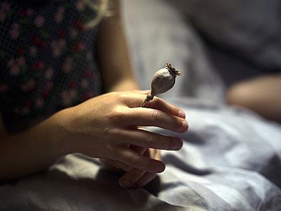 Mädchen hält vertrockneten Klatschmohn  - p945m1480835 von aurelia frey