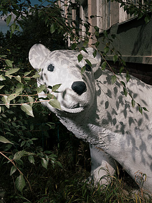 Ice bear - p1626m2259819 by Arne Eichhof