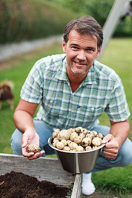 Man harvesting potatoes - p312m1533462 by Christina Strehlow
