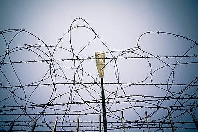 Barbed wire - p7950149 by JanJasperKlein