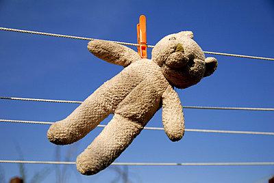 Teddy trocknet - p0440189 von Christiane Stephan