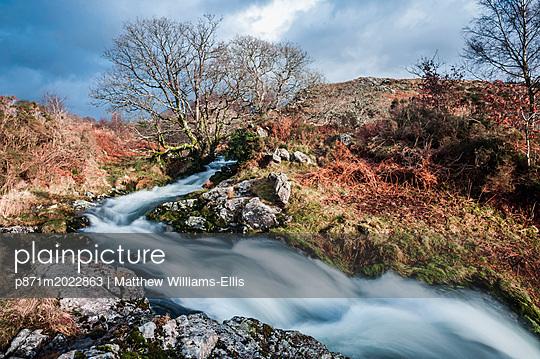 p871m2022863 von Matthew Williams-Ellis