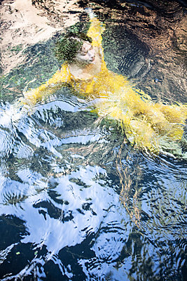 Woman in yellow dress in the lake - p1640m2259932 by Holly & John