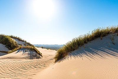 Germany, Schleswig-Holstein, Sylt, sand dune against the sun - p300m1587247 von Ega Birk