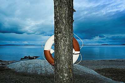 Lifebuoy hanging on tree by the sea - p1418m1572378 by Jan Håkan Dahlström