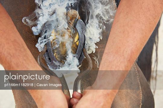 p1166m1182918 von Cavan Images