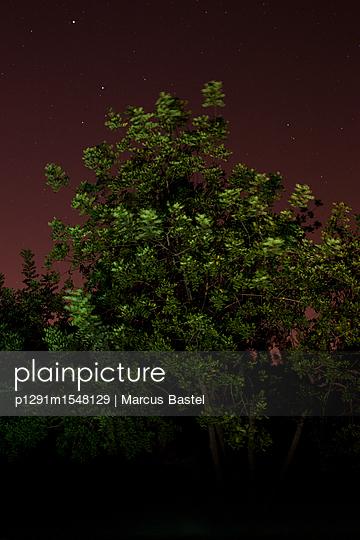 p1291m1548129 von Marcus Bastel