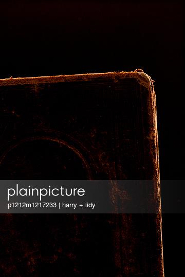 Altes Buch - p1212m1217233 von harry + lidy
