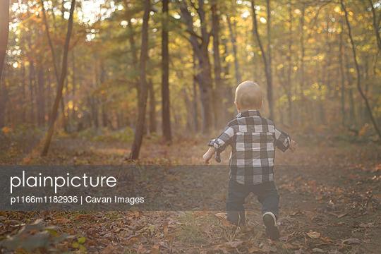 p1166m1182936 von Cavan Images