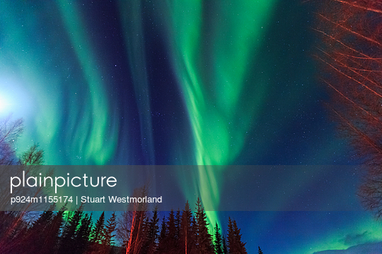p924m1155174 von Stuart Westmorland