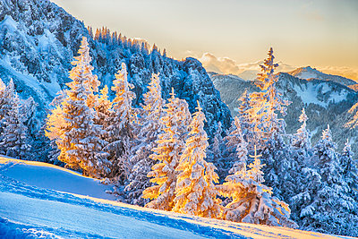 Alpen - p1205m1515976 von Toni Anzenberger