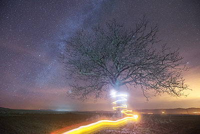 Milky way and light painting tree - p300m1204530 by David Herraez Calzada