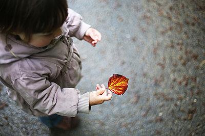 Child with leaf - p1160m1582868 by Emilie Reynaud