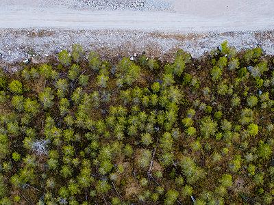 Wald von oben - p1549m2158059 von Sam Green