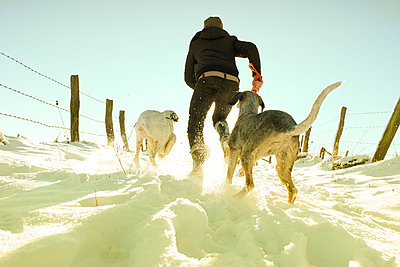 Germany, Bergisches Land, man running with dogs in winter landscape - p300m998651f by noonland