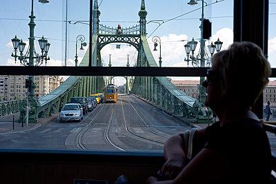 Liberty bridge - p347m952655 by Georg Kühn