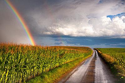 Landschaft - p1205m1515859 von Toni Anzenberger