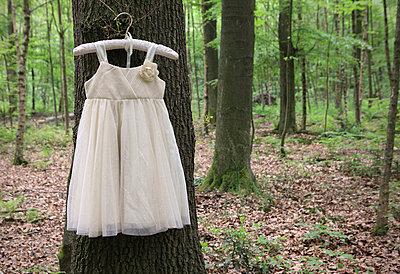 Kleid hängt im Wald - p045m1031180 von Jasmin Sander