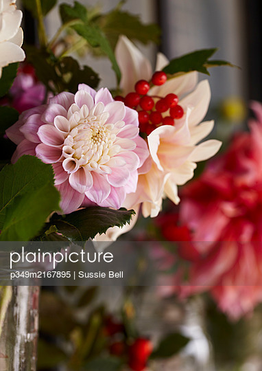 Detail of late summer blooms in glass jar  Dahlias and Rosehip - p349m2167895 by Sussie Bell