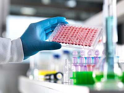 Scientist preparing human blood samples in a multi well plate ready for automated analysis in the laboratory. Additional keywords: Blood sample, blood screening, medical trail, health, multi well plate, automated analysis, pharmaceutical research, diagnos - p300m2143314 von Andrew Brookes