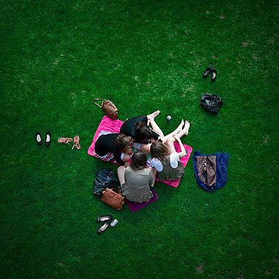 Green Grass - p1103m882520 by Virginie Pontisso