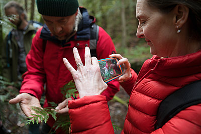 Woman with camera phone photographing plant, hiking in woods - p1192m2000475 by Hero Images