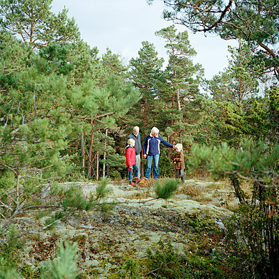 Senior couple with grandchildren in forest in forest - p312m998678 by Johan Willner